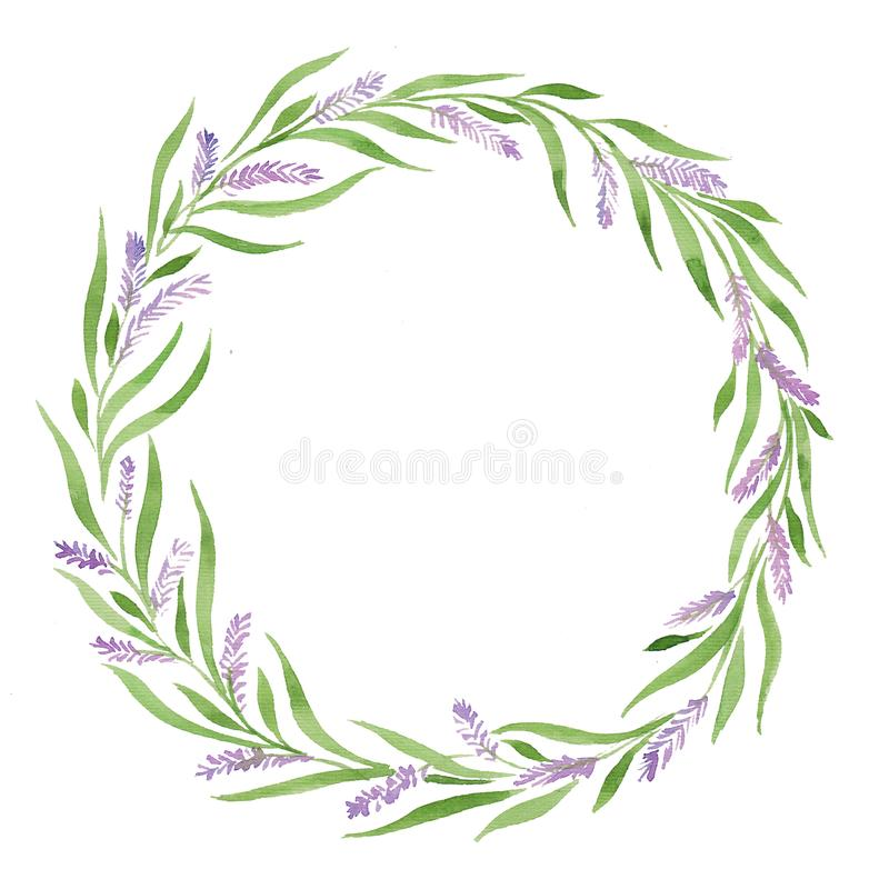 Watercolor illustration wreath lavender, leaves green purple flowers, tender, wedding pragmatics, provence. Gracefully, for printing cards, invitationsn royalty free illustration