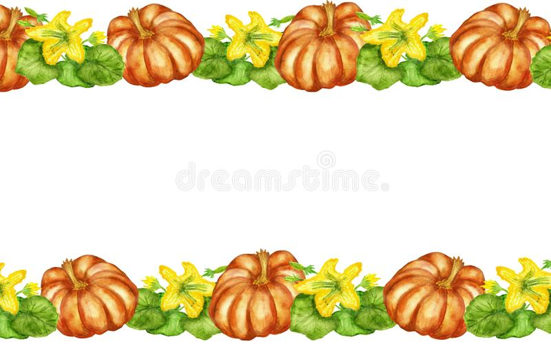 Watercolor illustrations, flowering pumpkin Bush with pumpkin fruits isolated on white background. stock illustration