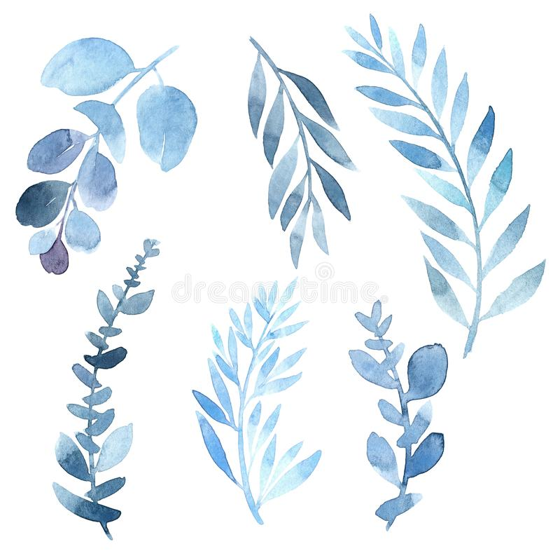 watercolor image of a branch in blue. Various plants are blue vector illustration