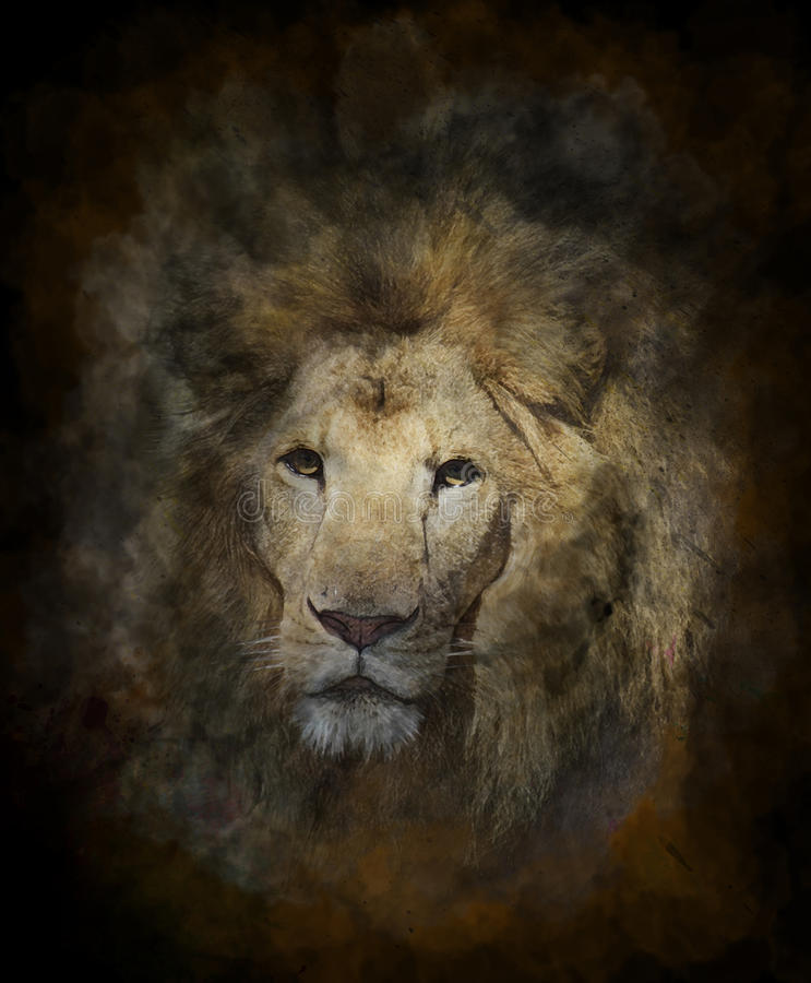 Watercolor Image Of Lion royalty free illustration