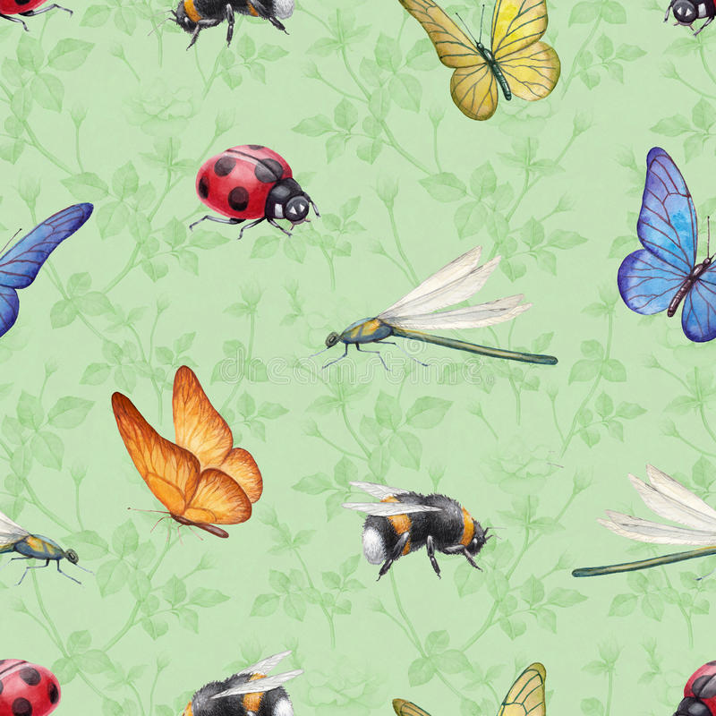 Download Watercolor Insects Illustrations Stock Illustration - Illustration of macro, flora: 38376827