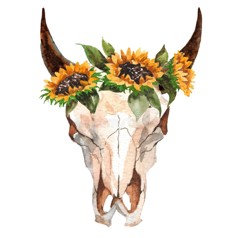 Watercolor Isolated Bull`s Head With Flowers And Feathers