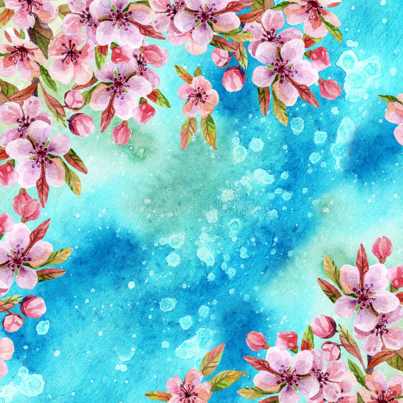 Watercolor japanese cherry blossoms stock illustration