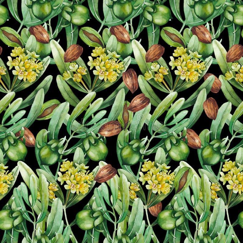 Watercolor jojoba pattern. Watercolor jojoba seamless pattern on black background stock images