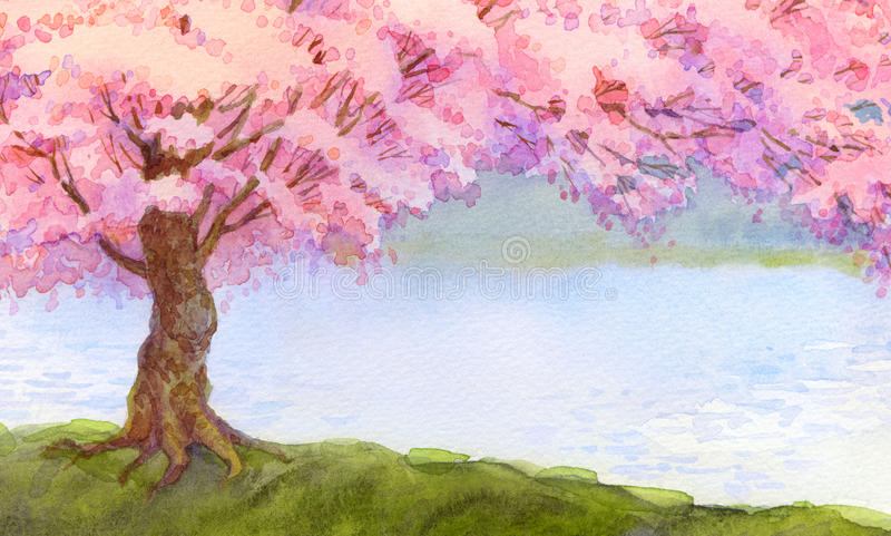 Watercolor landscape. Flowering pink tree stock illustration
