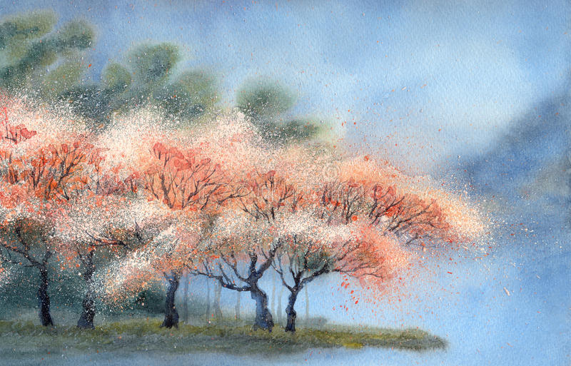 Watercolor landscape. Flowering trees near the river stock illustration