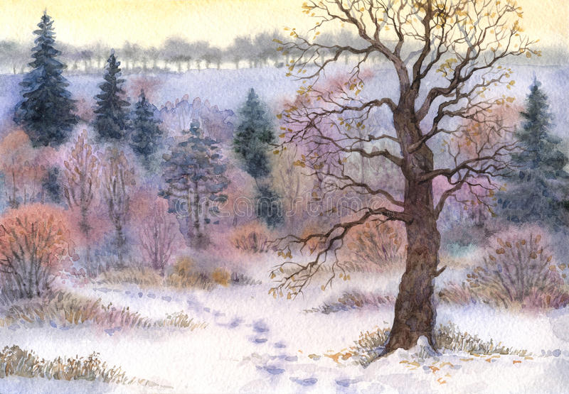 Watercolor landscape. Oak in the woods in winter the valley. Watercolor landscape. Old tall oak in a forest clearing in the winter snow valley stock illustration