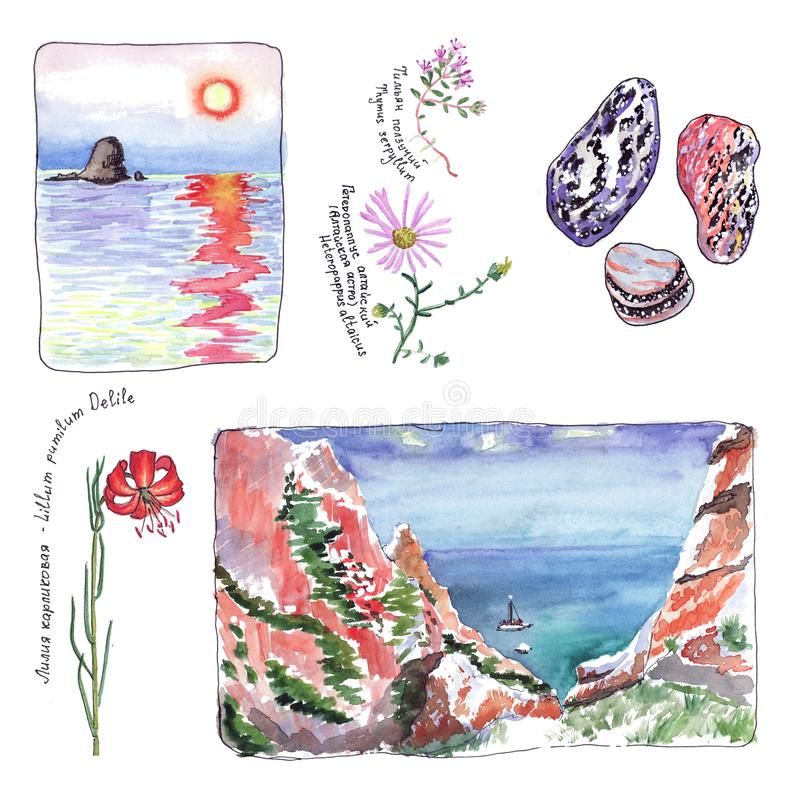 Watercolor landscape plants and stones of Lake Baikal. Watercolor landscape - sunset, dawn and a yacht on the sea, plants and stones of Lake Baikal stock illustration