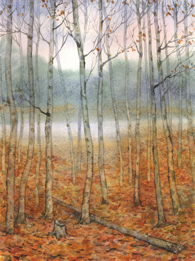 Watercolor landscape. A quiet evening in the autumn forest royalty free illustration