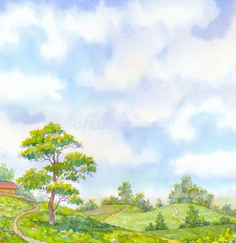 Watercolor landscape summer day. Tall oak tree beside the path stock illustration