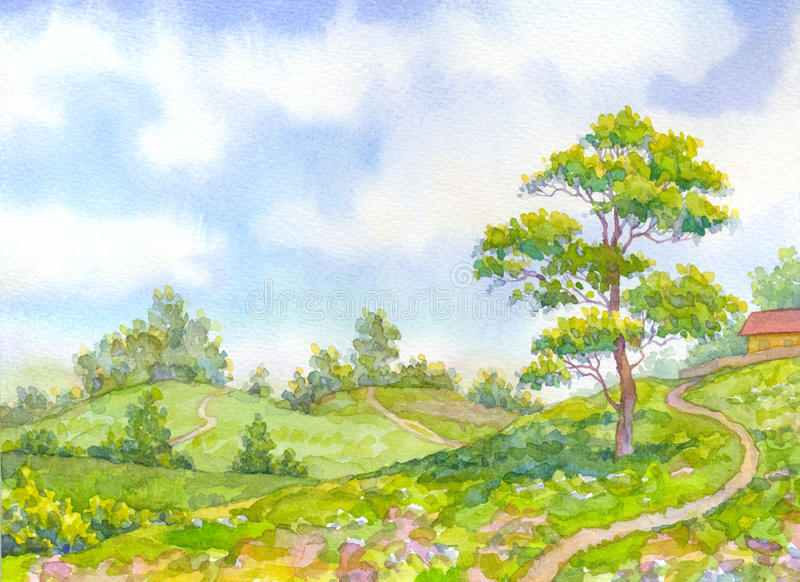 Watercolor landscape summer day. Tall oak tree beside the path. Watercolor landscape merry sunny summer day. Tall oak tree beside the path leading down the hill vector illustration