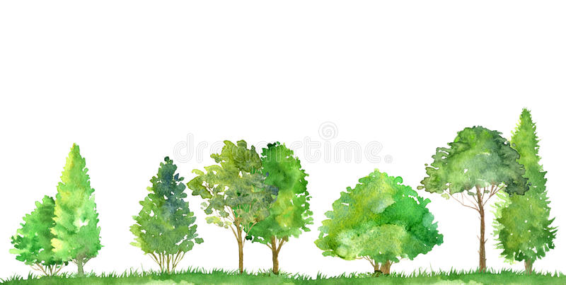 Watercolor landscape with trees. Watercolor landscape with deciduous trees,pine and firs, bushes and grass, abstract nature background, forest template, green royalty free illustration