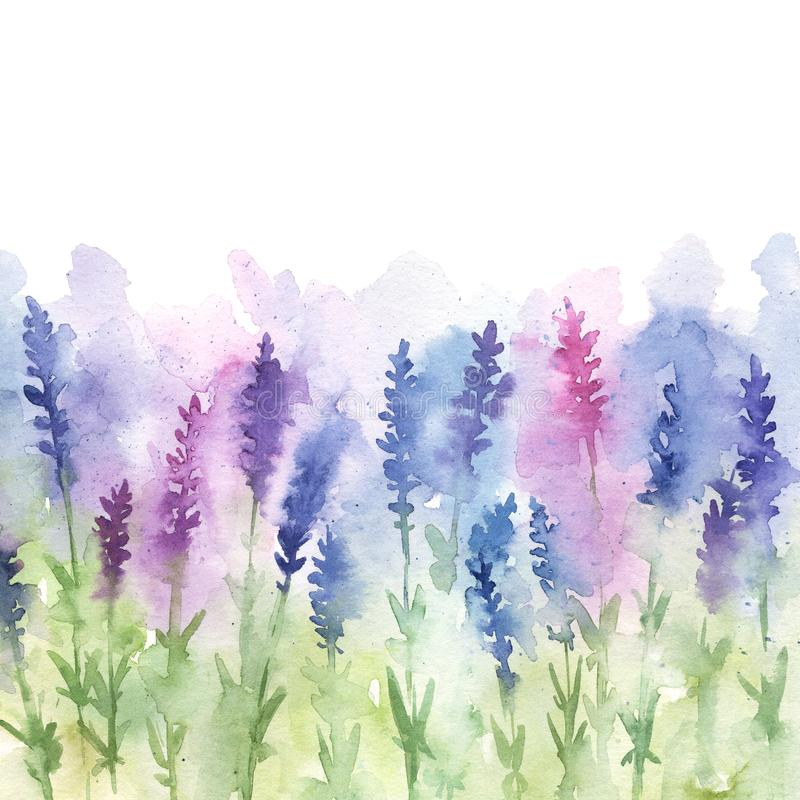 Watercolor lavender field illustration royalty free illustration