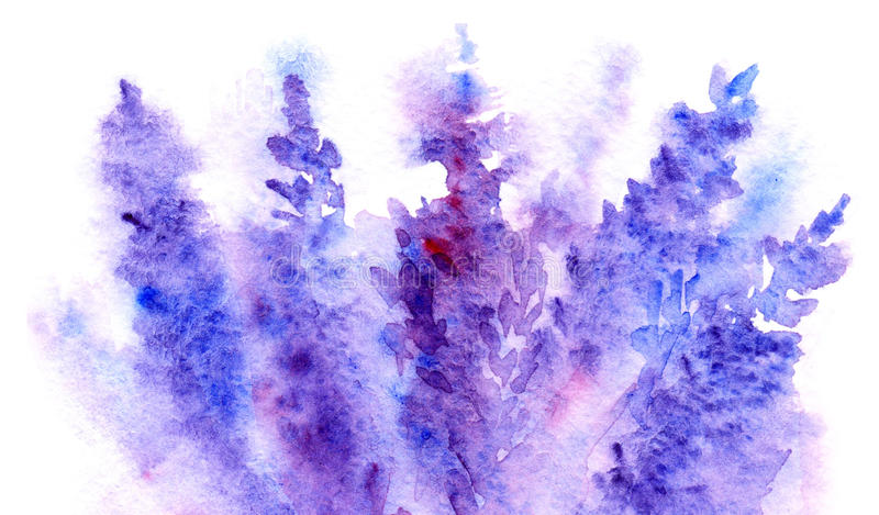 Watercolor lavender flower blossom abstract background texture royalty free illustration
