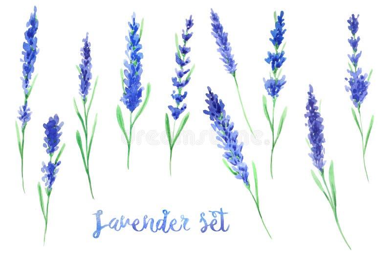 Watercolor lavender flowers set stock illustration