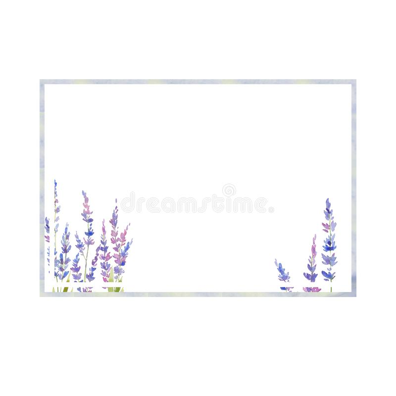 Watercolor lavender frame of flowers. floral provencal style design . Hand drawn field flowers stock illustration