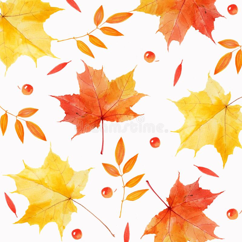 Watercolor autumnal leaves and berries abstract background royalty free stock photo
