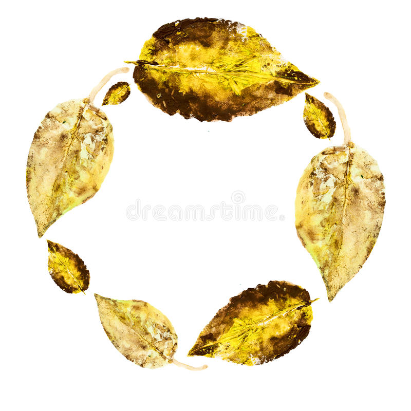 Watercolor leaves isolated on white background, Round frame, hand drawn wreath stamp imprint leaf, greeting card, banner, backgrou vector illustration