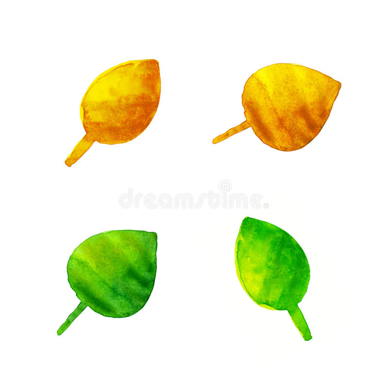 Download Watercolor Leaves Isolated On White Stock Illustration - Illustration of background, foliage: 42310335