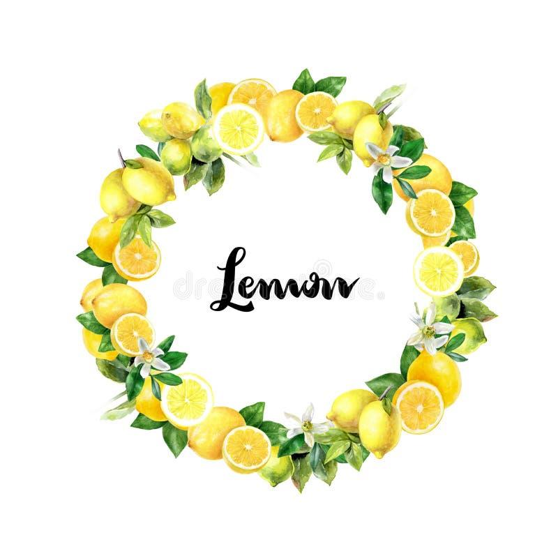 Watercolor hand drawn lemon design template card. Watercolor lemon greeting card template. Hand drawn watercolor illustration. Round design template stock image
