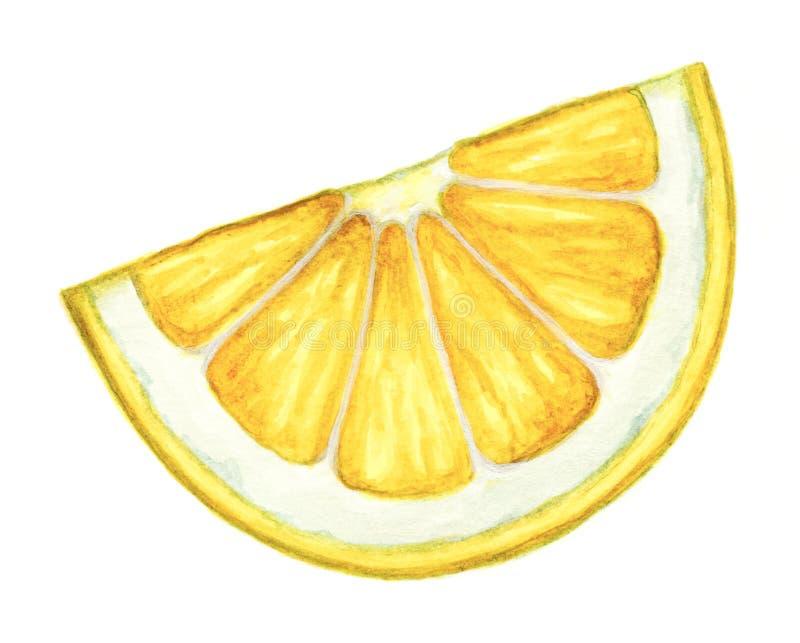 watercolor lemon slice on white background stock illustration rh dreamstime com Lemon Cartoon Clip Art Vintage Lemon Clip Art