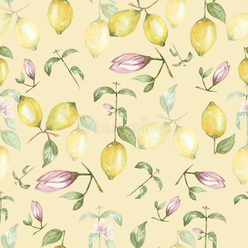 Watercolor lemons Seamless pattern. Yellow citrus fruit background. Sicily Lemon, leaves and  flowers. Tropical lemon illustration royalty free illustration