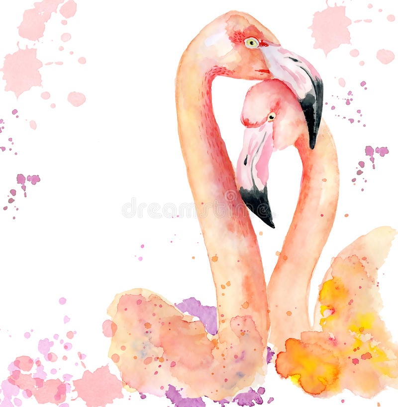 Watercolor loving couple of pink flamingos vector illustration