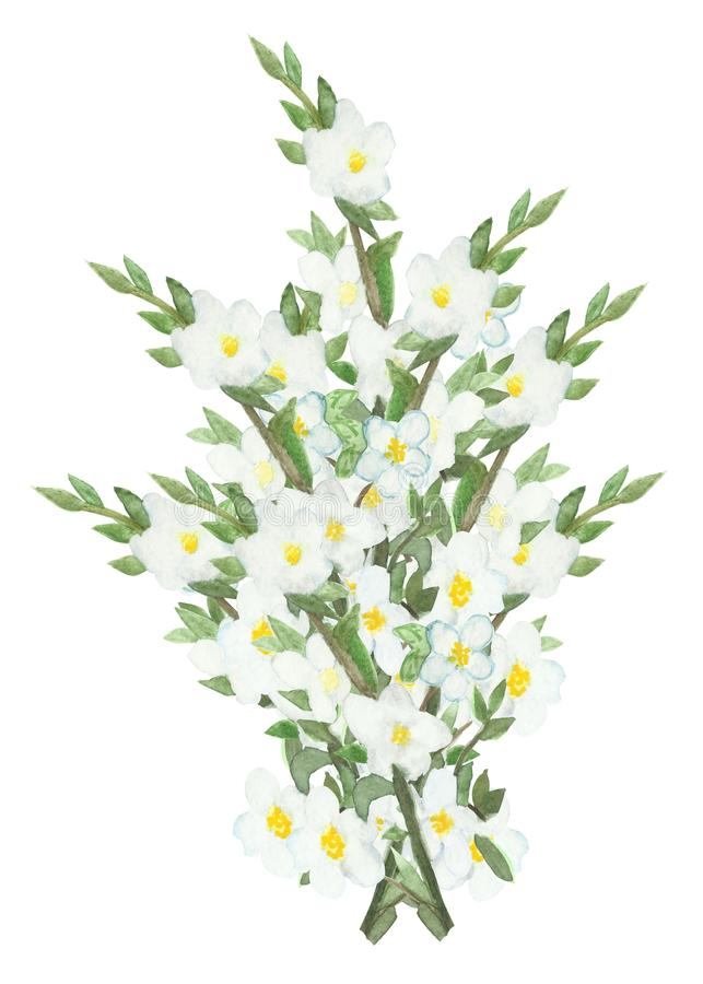 Watercolor lush bouquet of flowering branches of Apple trees.Watercolor lush bouquet of flowering branches of Apple trees. Watercolor lush bouquet of flowering vector illustration