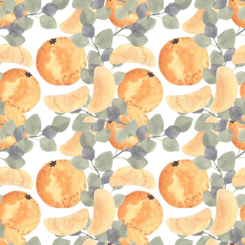 Watercolor mandarine orange fruit with leaves seamless pattern. Watercolor mandarine orange fruit with leaves seamless pattern on white background. Orange vector illustration
