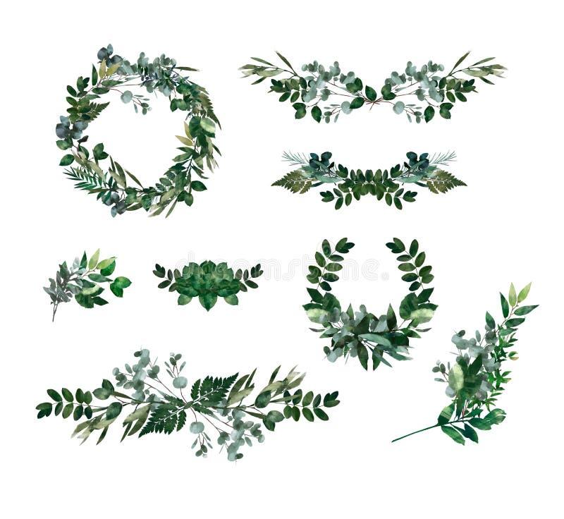 Watercolor modern decorative element. Eucalyptus round Green leaf Wreath, greenery branches, garland, border, frame, elegant stock illustration