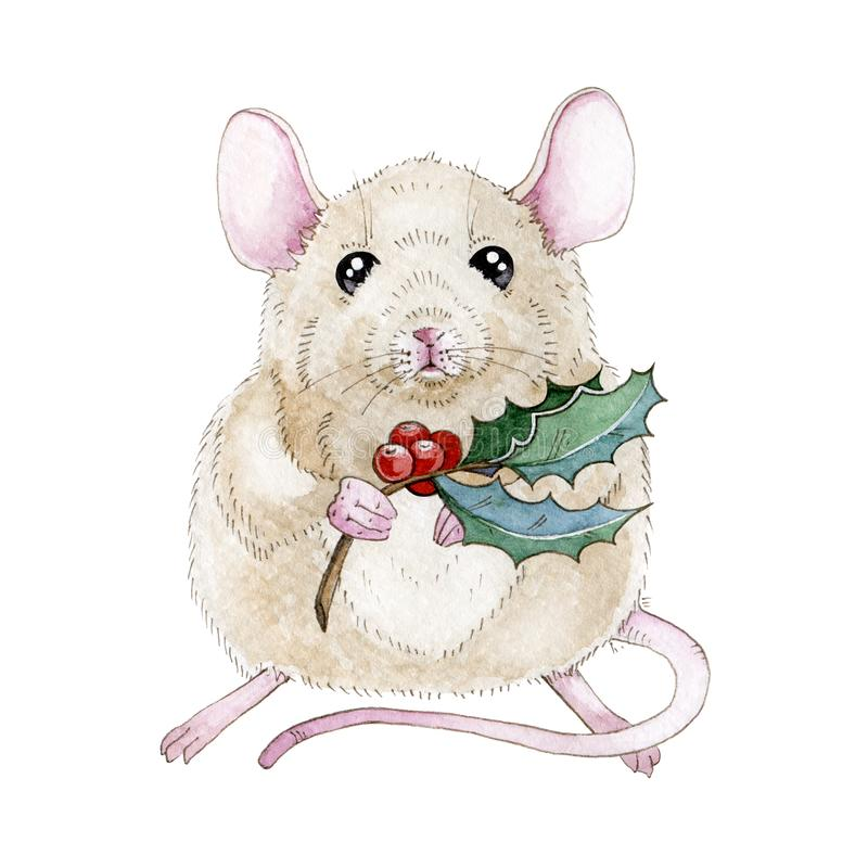 Watercolor mouse or rat illustration with nice Christmas holly branch. Cute little mouse a simbol of chinese zodiac 2020 new year royalty free illustration