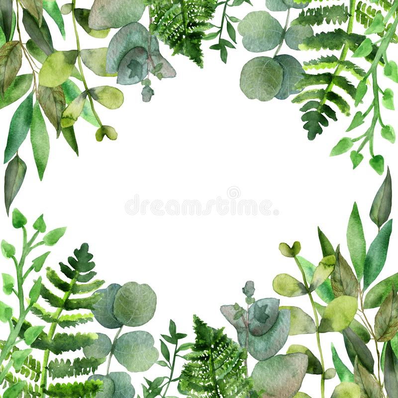 Watercolor natural frame of branches of tropical plants fern and eucalyptus.  Hand painted watercolor floral elements. stock illustration