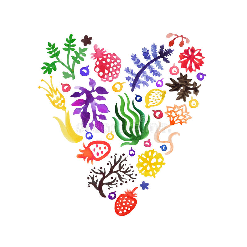 Watercolor nature vector heart with flowers, berries and plants (multicolored). Perfect for invitations and other design. stock illustration