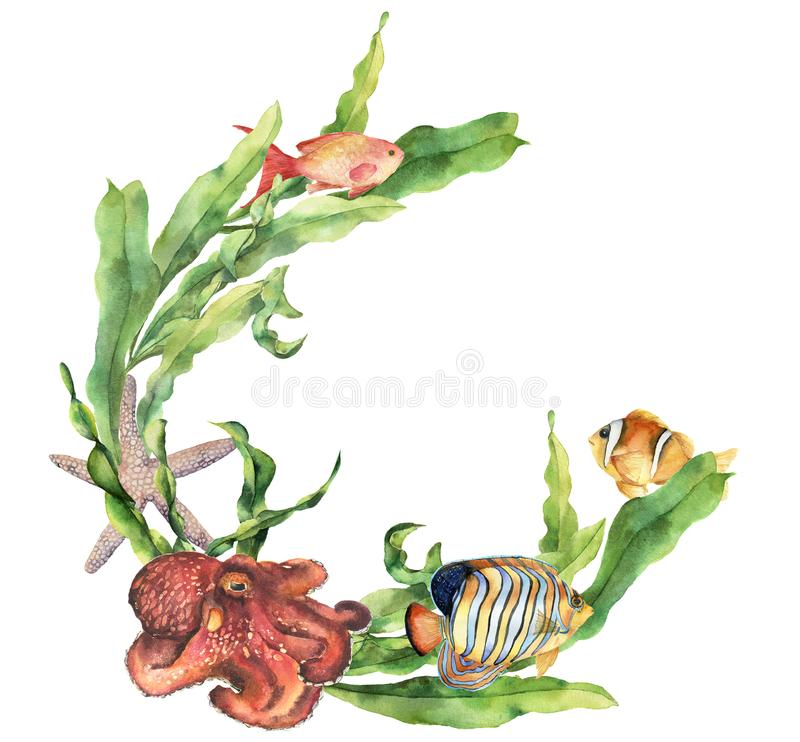 Watercolor nautical border with octopus. Hand painted underwater illustration with laminaria branch, starfish and. Tropical fish isolated on white background stock illustration