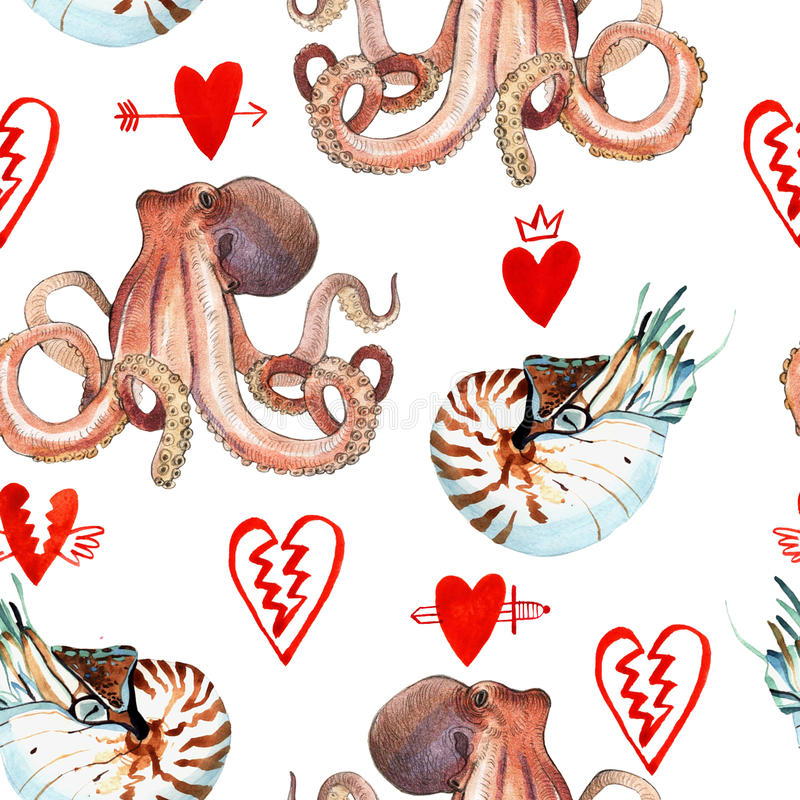 Watercolor nautilus and octopus. Watercolor pattern of nautilus and octopus hand painted illustration on white background royalty free illustration