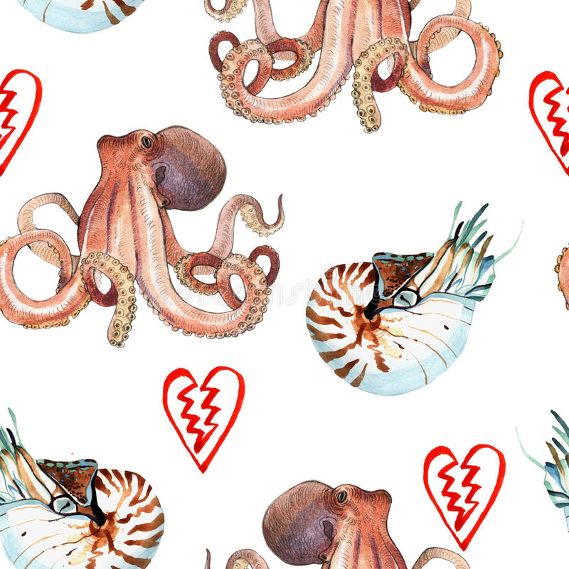 Watercolor nautilus and octopus. Watercolor pattern of nautilus and octopus hand painted illustration on white background stock illustration