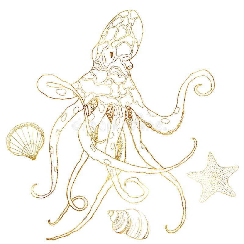 Watercolor octopus in line art style. Hand painted starfish, mollusk and shell isolated on white background. Aquatic. Outline illustration for design, print or stock illustration