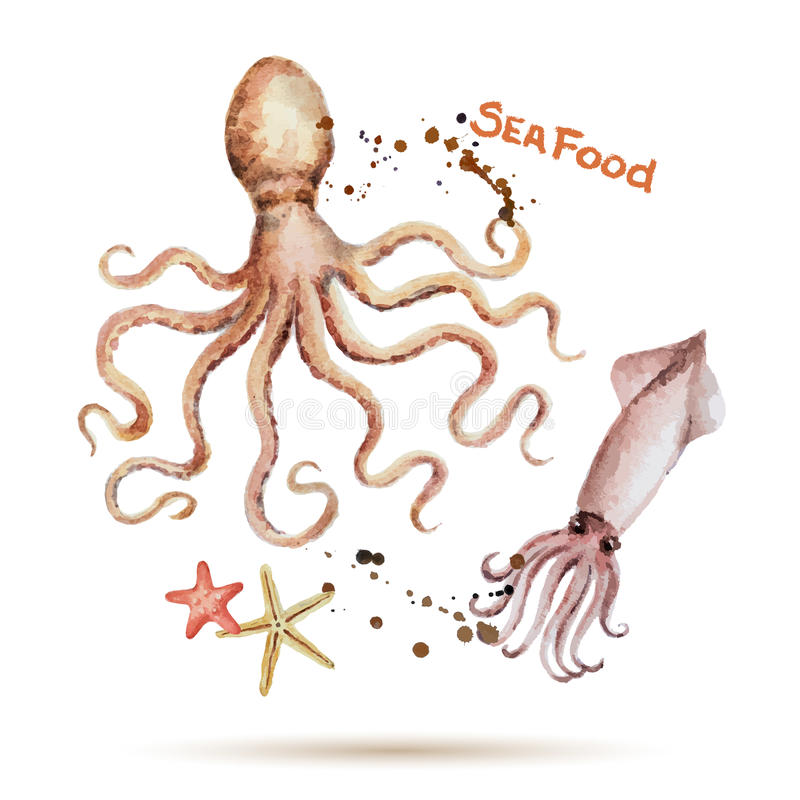 Watercolor octopus and squid. Fresh organic seafood. Vector illustration stock illustration
