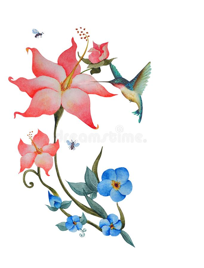 Free Watercolor Of Pink And Blue Flowers With A Hummingbird And Bees Royalty Free Stock Photos - 217644368