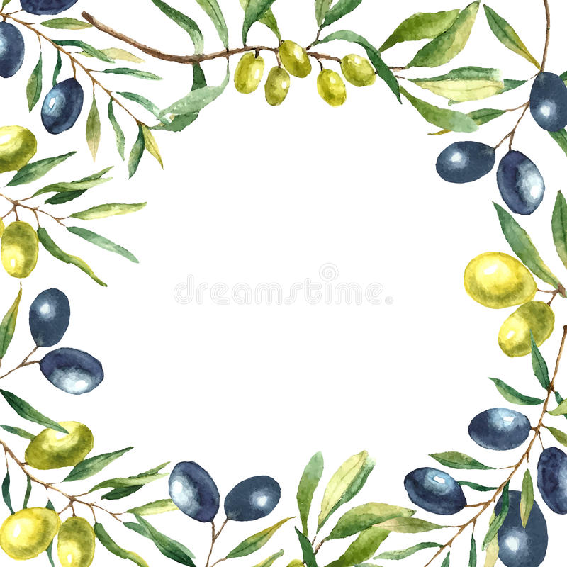 Watercolor olive branch background. Hand draw round card natural vector elements stock illustration