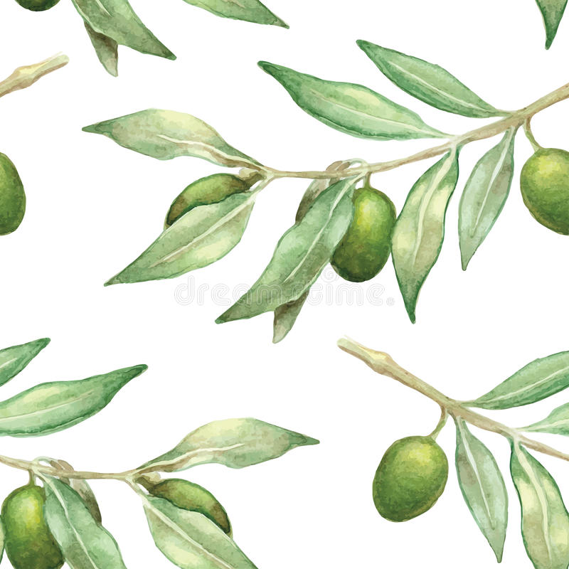 Watercolor olive branch seamless pattern stock illustration