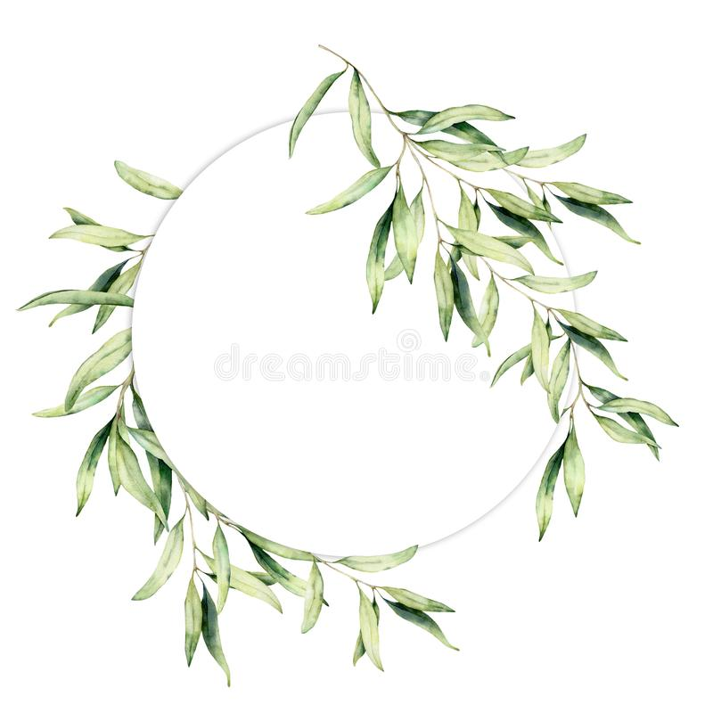 Free Watercolor Olive Leaves Wreath. Hand Painted Floral Circle Border With Olive Tree Branches With Leaves Isolated On White Royalty Free Stock Photos - 156263648