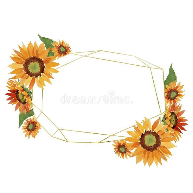 Watercolor orange sunflower flower. Floral botanical flower. Frame border ornament square. Aquarelle wildflower for background, texture, wrapper pattern, frame royalty free stock images