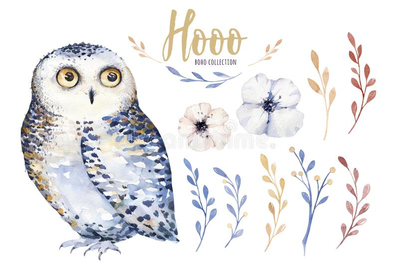 Watercolor owl with flowers and feather. Hand drawn isolated illustration with bird in boho style. Nursery printable stock illustration