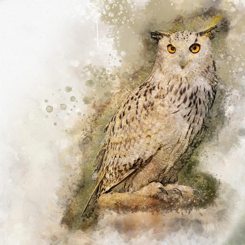 Watercolor Owl. Hand drawn watercolor owl perfect for design greeting card or print stock illustration