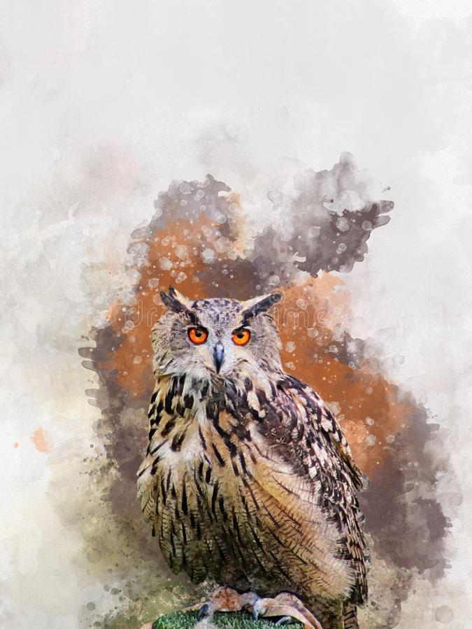 Watercolor Owl. Hand drawn watercolor owl perfect for design greeting card or print royalty free stock photo