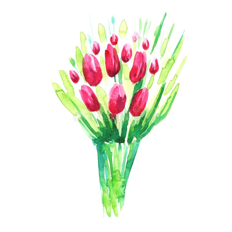 Watercolor painted bunch of pink tulips. Bright design decoration element. Use as a sticker, illustration, decorative idea. Watercolor painted bunch of pink royalty free stock image