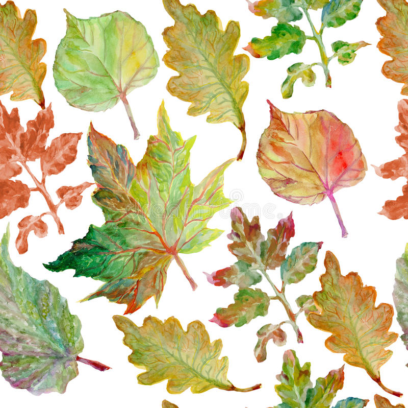 Watercolor painting. Autumn leaves royalty free illustration