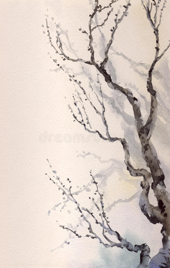 Watercolor painting. Bare branches of an old tree royalty free illustration