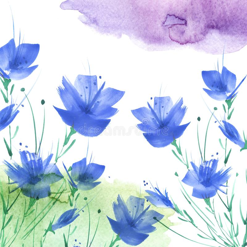 Watercolor painting. A bouquet of flowers of Blue poppies, wildflowers on a white isolated background. stock photo
